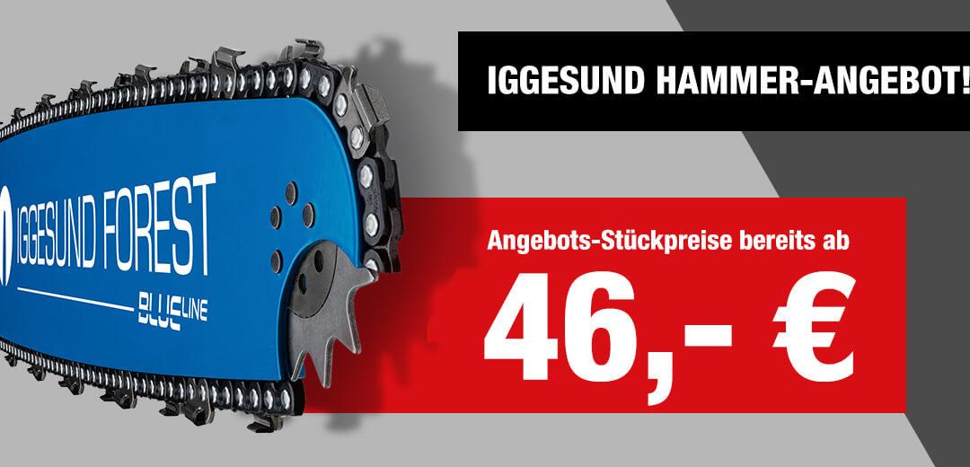 Iggesund Schienen – HAMMER-AKTION